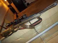 Ruger 10 22 with green wood stock sling high courty 3.5x10 scope